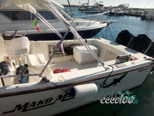 Walkaround Mako Marine 250 Anniversary 2×200 mercury strafull