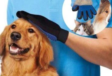 Guanto per la pulizia del pelo di animali  (cani/gatti) a €. 5,00