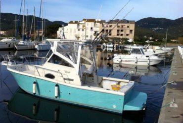 FISHERMAN Tuccoli T21 + 200Hp VM – Tutto 2007. €.26000