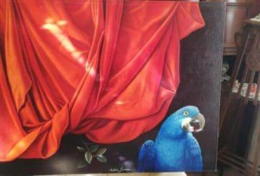 Quadro pappagallo blu di Antonio Sciacca