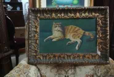 """Dipinto Patrone """"il gatto"""" 64×46 a €. 60"""