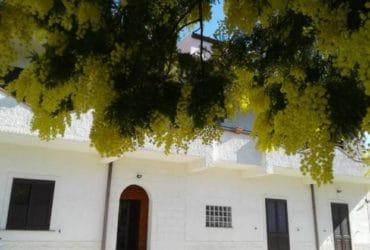 Affitto appartamento a Montallegro (AG) Torre Salsa