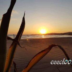 spiaggia di san leone agrigento